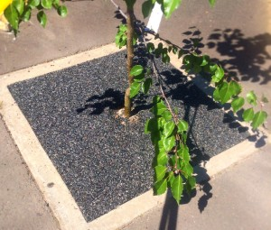 permeable tree surround terrabond